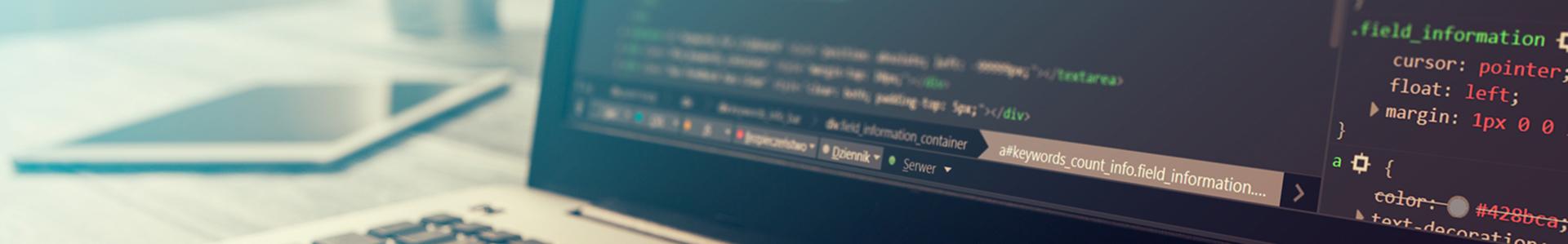 WordPress plugin laten maken